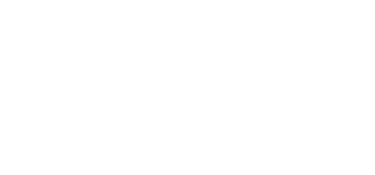 Vision Fleet